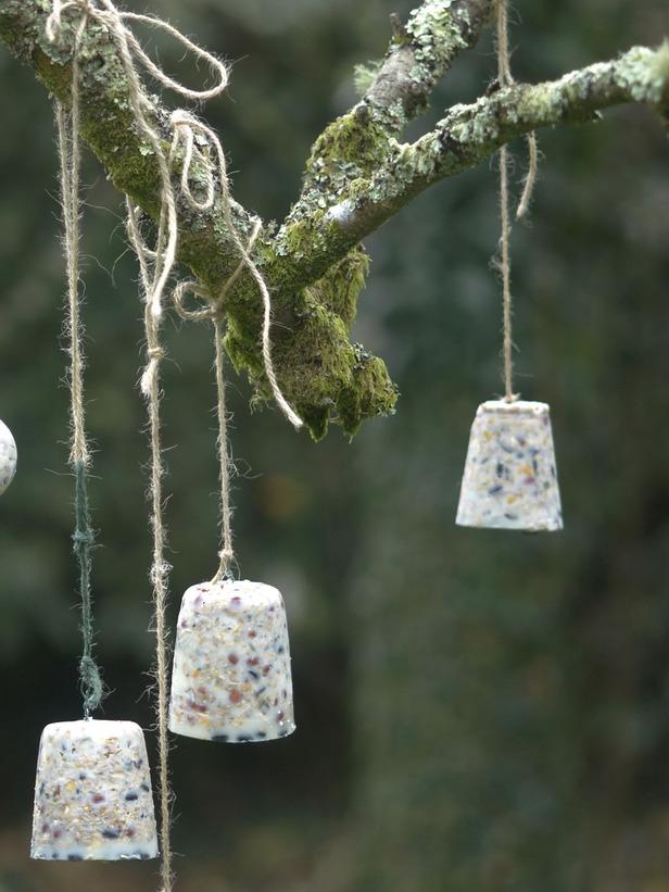 необычные кормушки для птиц