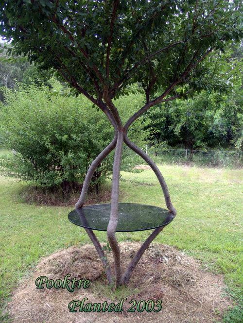 Садовый столик на дереве