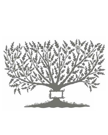 семейное дерево в картинках
