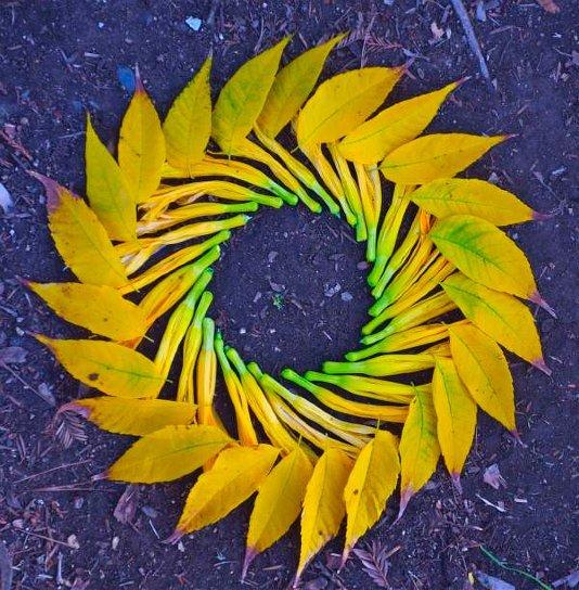 Как делать картины из цветов и листьев своими руками