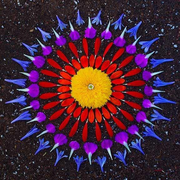 Картины из цветов своими руками