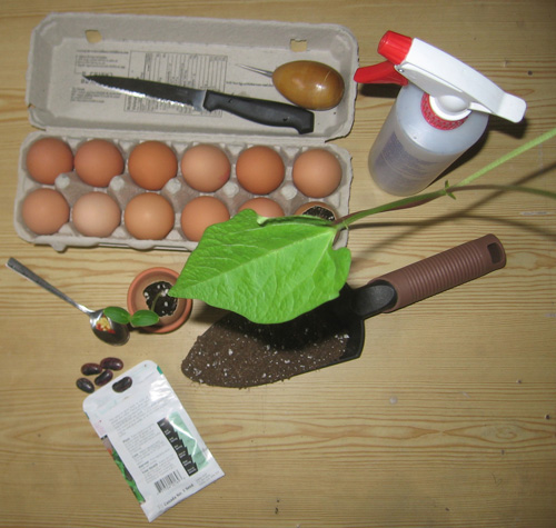 Материалы для создания вазы из яичной скорлупы